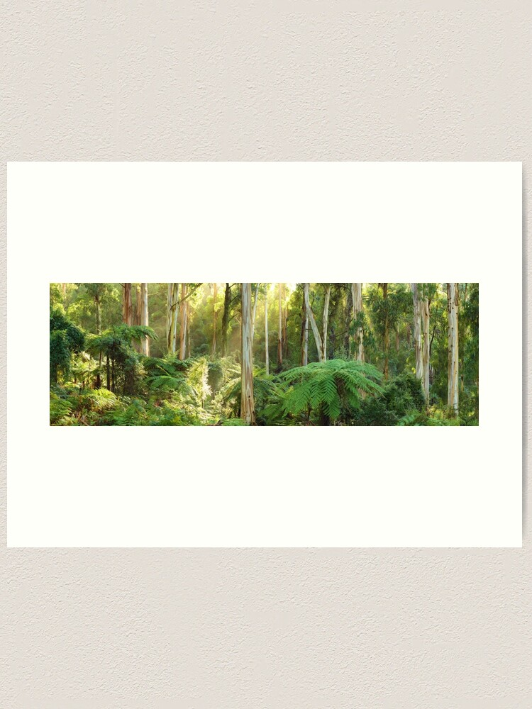 Alternate view of Dawn Lights The Dandenongs, Australia Art Print