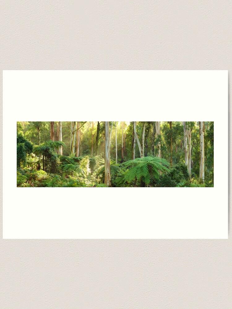 Alternate view of Dawn Lights The Dandenongs, Australia Art Print