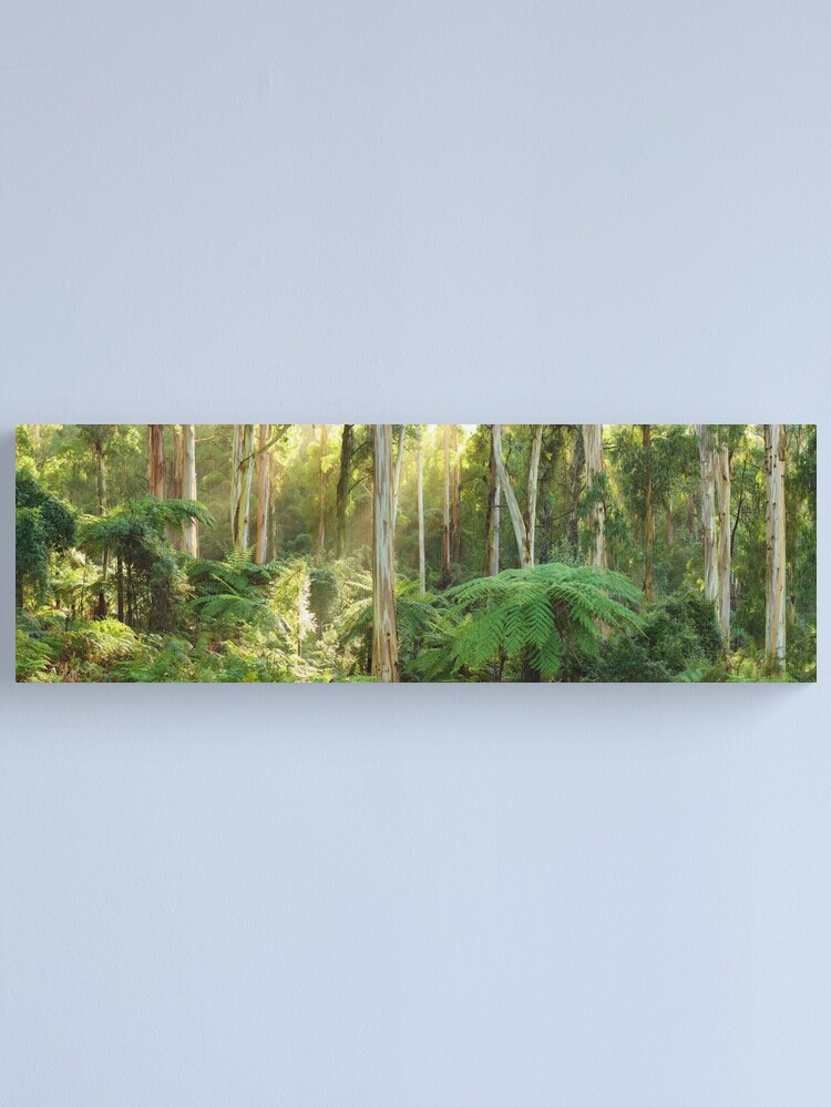 Alternate view of Dawn Lights The Dandenongs, Australia Canvas Print