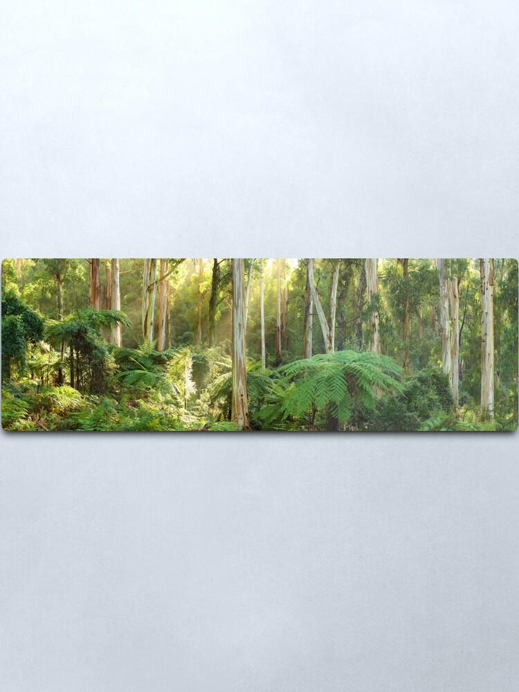 Alternate view of Dawn Lights The Dandenongs, Australia Metal Print