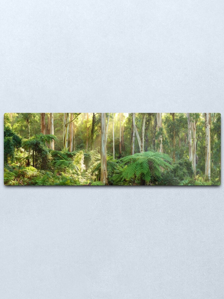 Alternate view of Dawn Lights The Dandenongs, Australia Metal Print