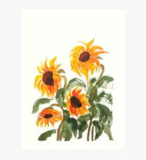 sunflower watercolor 2018 Art Print