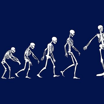 Evolution Skate Skeletons by zomboy