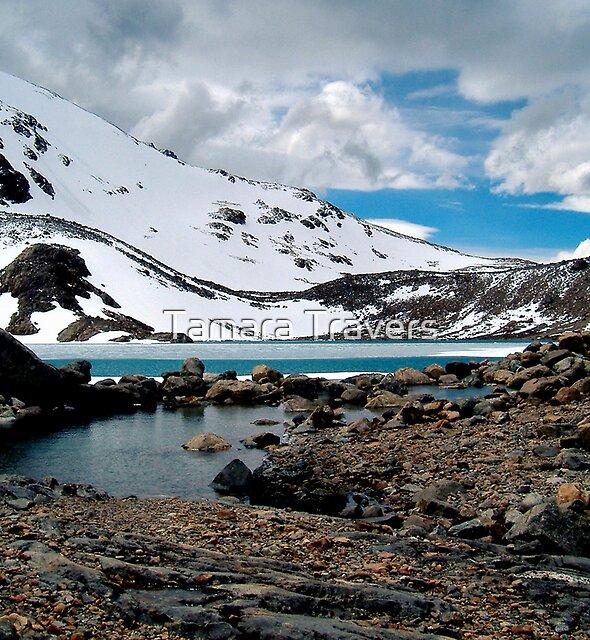 Frozen Lake, Fitzroy Range, Patagonia by Tamara Travers