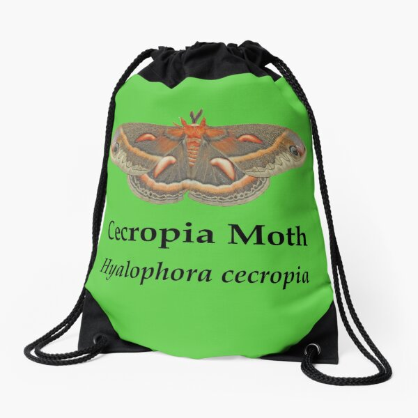 Cecropia Moth - Black Lettering Drawstring Bag