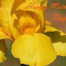 Happy Mother's Day by Lolabud