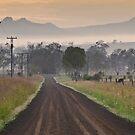 Rural by Garry Schlatter