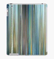 The Many Adventures of Winnie the Pooh iPad Case/Skin