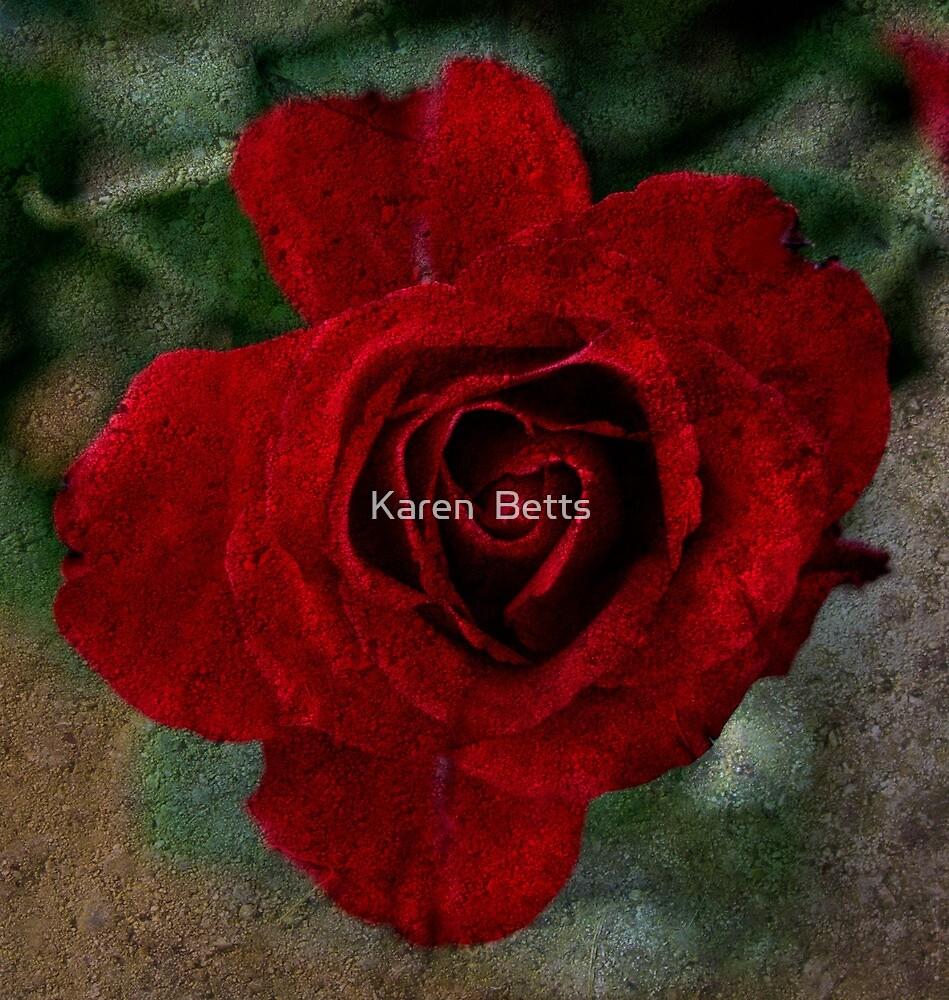Deep red rose by Karen  Betts
