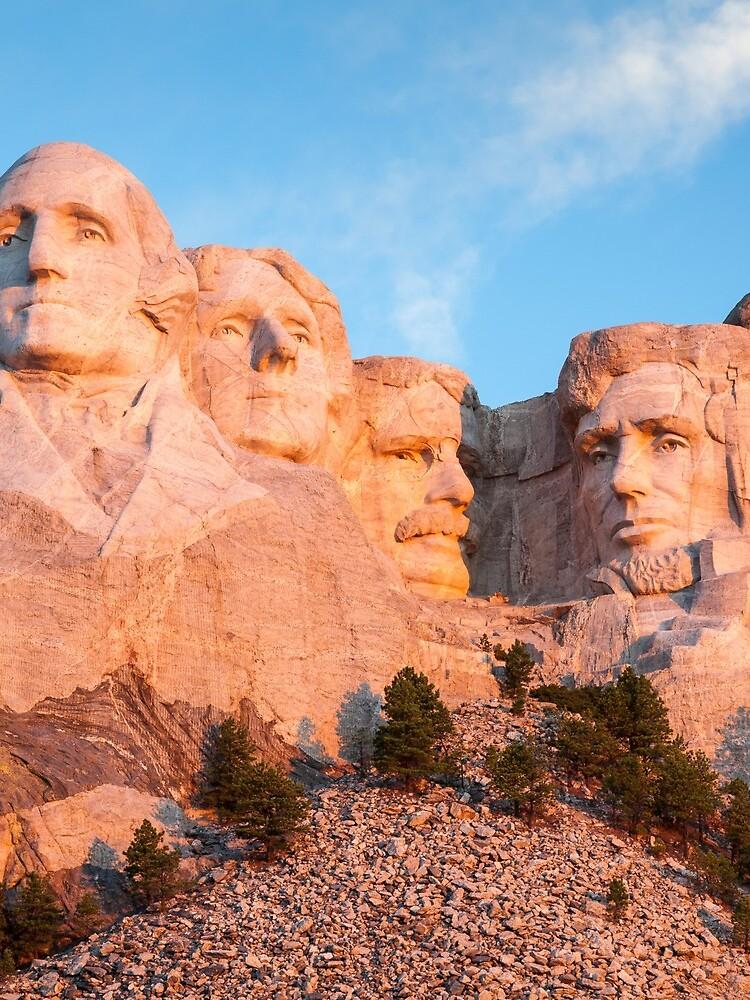 Mount Rushmore National Memorial - Black Hills, South Dakota by mcdonojj