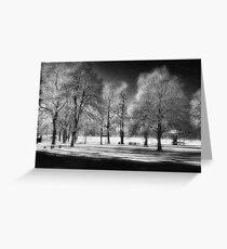 WP SNOW Greeting Card