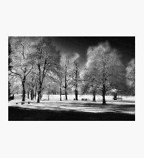 WP SNOW Photographic Print
