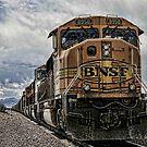 BNSF by dvande1