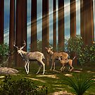 Redwood Deer by Walter Colvin