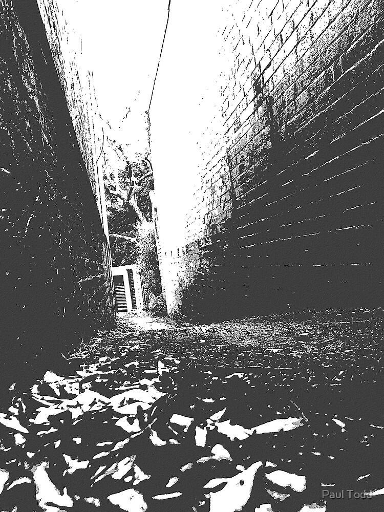 Back Lane Notes by Paul Todd