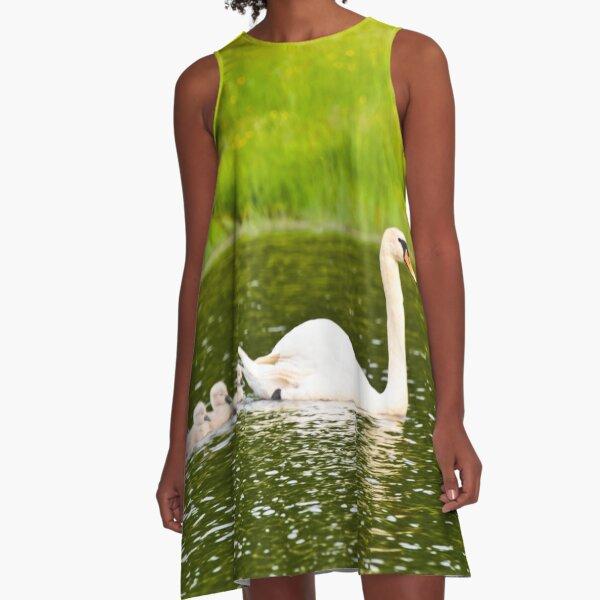 Swan's Newborn Goslings Swimming  A-Line Dress