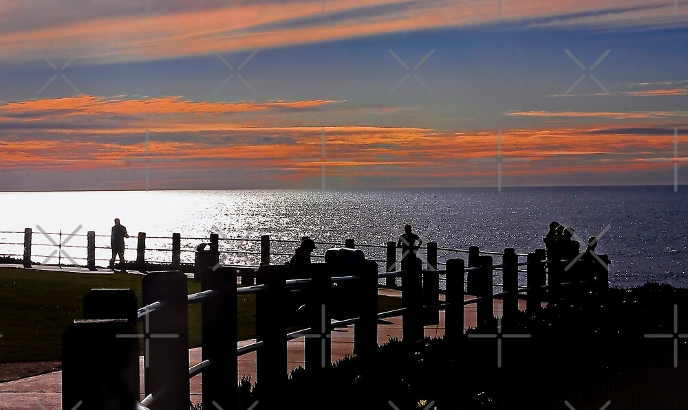 La Jolla Path at Sunset by Heather Friedman