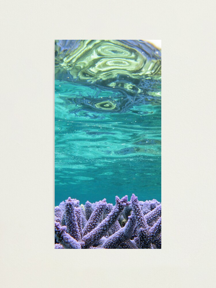 Alternate view of Coral Reeflections I Photographic Print