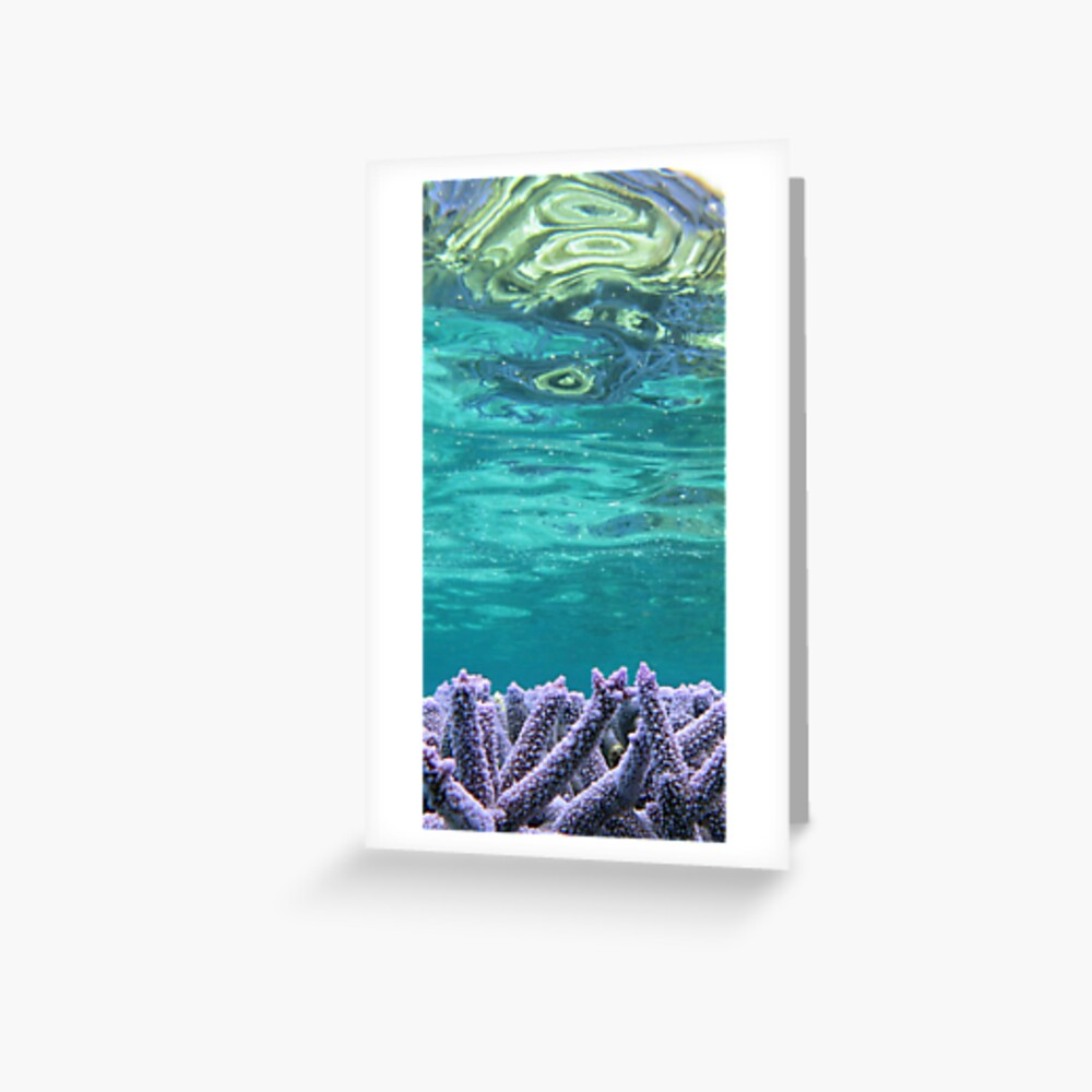 Coral Reeflections I Greeting Card