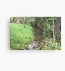 Brownhill Creek Recreation Reserve, S.A. Canvas Print