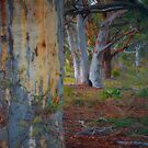 Tree Hugging - Rylstone NSW - Australia Landscape Orientation by Philip Johnson