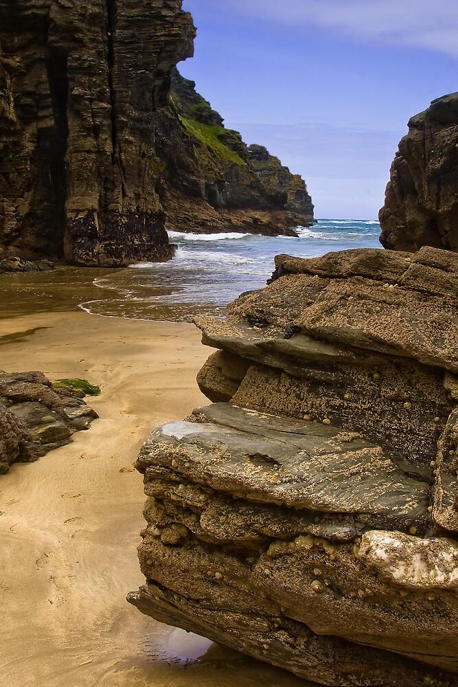 Elephant Rock 2 by David Wilkins