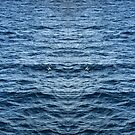 Blue sea abstract by quentinjlang
