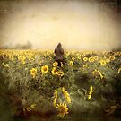 Day of the Sunflowers by yolanda