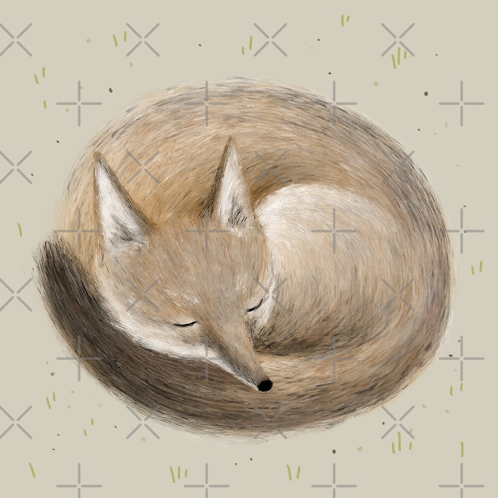 «Swift Fox Sleeping» de Sophie Corrigan