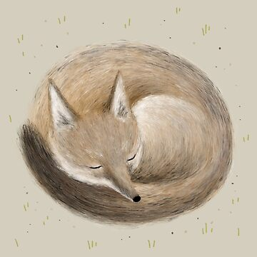 Swift Fox Sleeping by SophieCorrigan