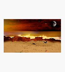 A  Starry Forster Evening Photographic Print