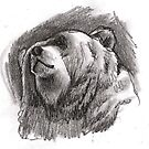 Grizzly head by Alleycatsgarden