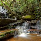 Somersby Rocks by Michael Matthews