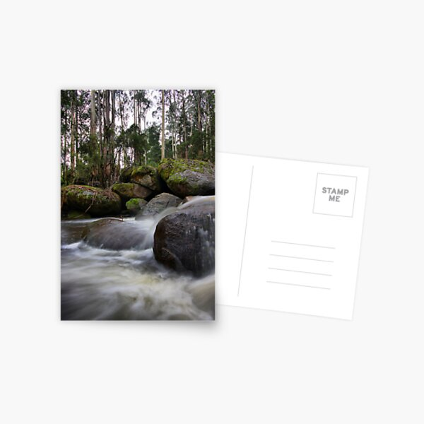Milk of the Forest - Toorongo River Postcard