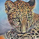 Pastel Chalk Art Leopard Cub Green Eyes by Jillian Crider