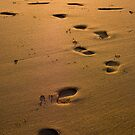 footprints by pmacimagery