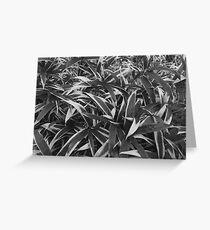 Textured Bamboo Greeting Card
