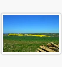 Fields of Gold and Green- Abbotsbury Dorset UK Sticker