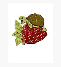 Turtle Berry Photographic Print