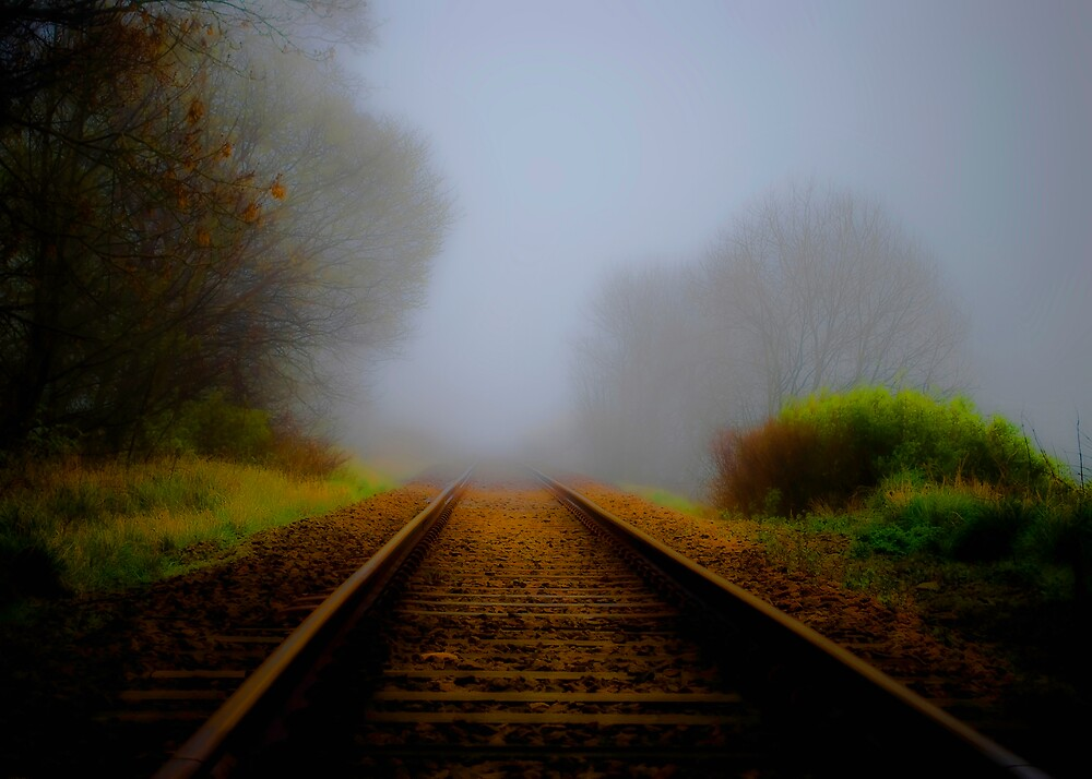 Forgotten Track by Svetlana Sewell