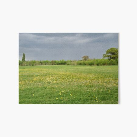 Pentylands Park, Highworth Art Board Print