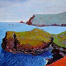 Doon Point and Glen Head, Donegal, Ireland by eolai