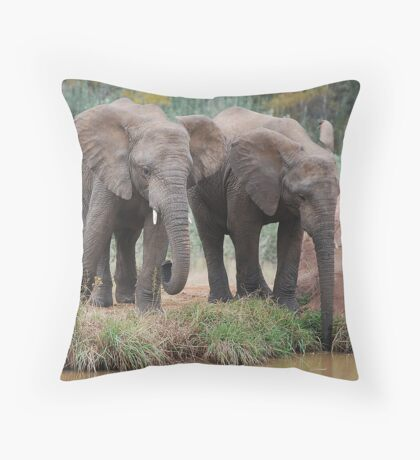 Drinking Throw Pillow