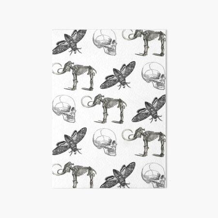 Moth & Skull Art Board Print