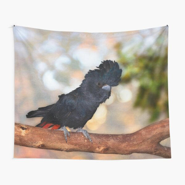 Raf the Red Tailed Black Cockatoo, Native Animal Rescue, Perth Tapestry