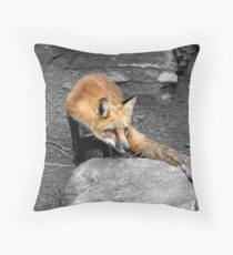 Red Fox - Selective Coloring Throw Pillow