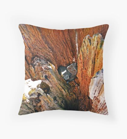 Boulevard Park Textures-Wood Throw Pillow