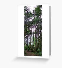 Funky Tree Greeting Card