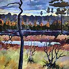Siberian Swamps in the Fall by Oleg Atbashian