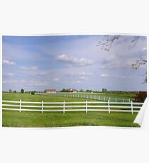 Rows of White Picket Fences Poster